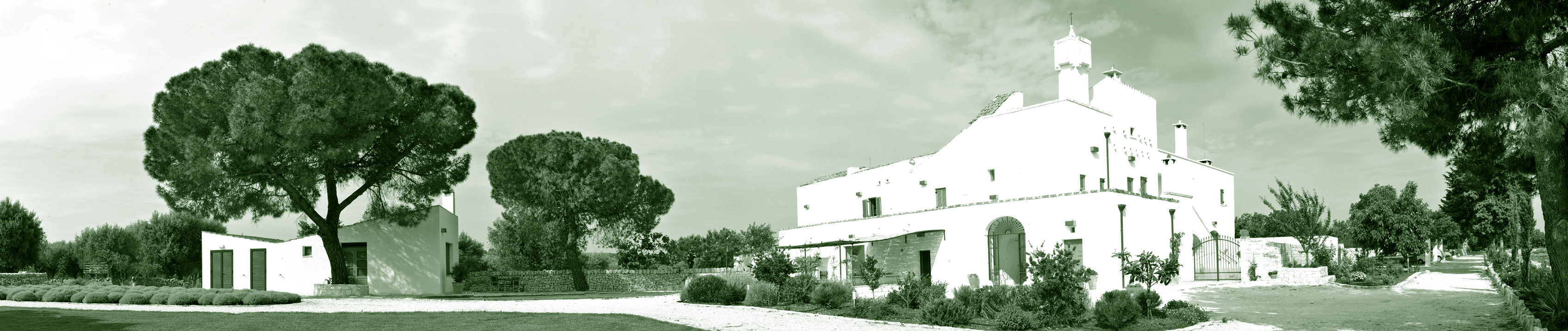 Our wedding in Puglia, Italy at the Masseria Della Zingara