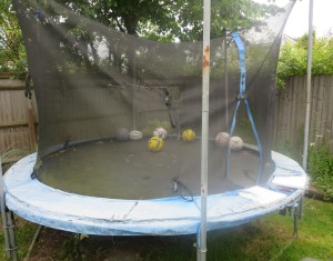 traditional trampoline